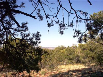 54867 N. Presidio Parkway, Seligman, AZ 86337 Photo 11