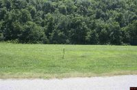 Home for sale: Lot 72 Cane Island Rd., Flippin, AR 72634