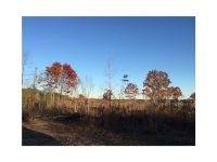 Home for sale: 0 Hwy. 120, Buchanan, GA 30113
