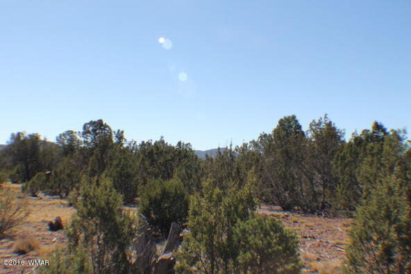 8 Acres Off Of Acr N. 3114, Vernon, AZ 85940 Photo 11