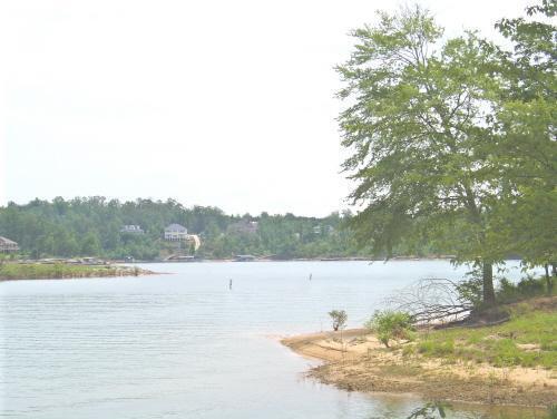 61 Stoney Point Landing, Double Springs, AL 35553 Photo 4