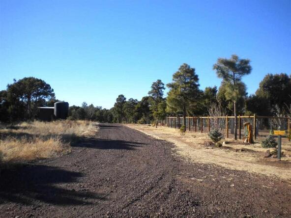 5088 Tosca Cir., Pinedale, AZ 85934 Photo 5