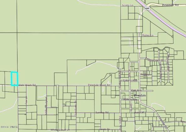 5194 Pinedale Wash Rd., Pinedale, AZ 85934 Photo 2