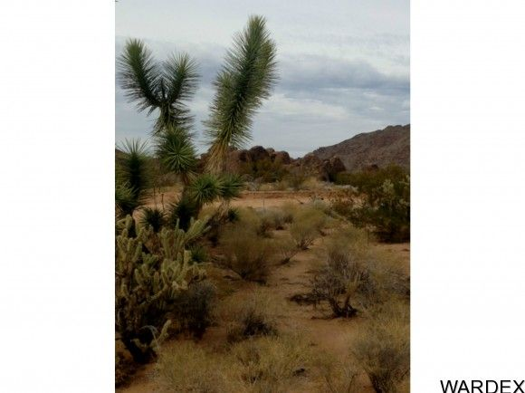 3282 Goldmine Ln., Yucca, AZ 86438 Photo 3