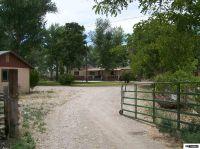 Home for sale: 6255 Reno Hwy., Fallon, NV 89406
