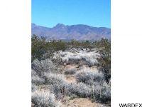 Home for sale: 11 Desert View, Yucca, AZ 86438