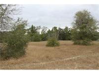 Home for sale: 2610 Mcmichael Rd., Saint Cloud, FL 34771