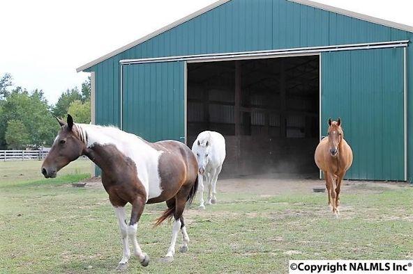 6852 County Rd. 52, Dawson, AL 35963 Photo 8