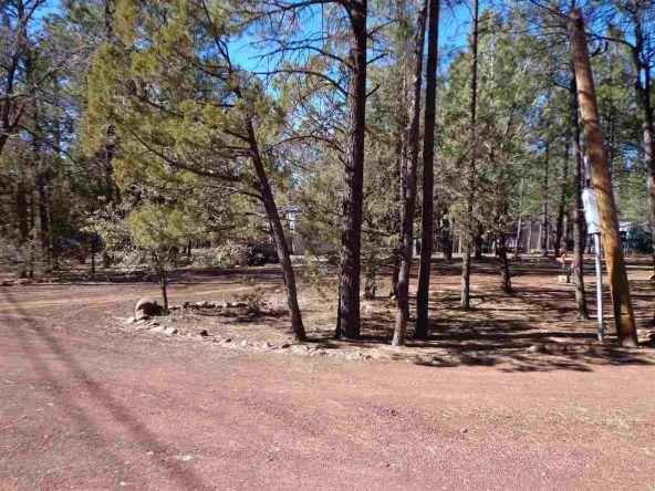 3530 Petes Retreat, Lakeside, AZ 85929 Photo 6