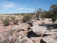 Home for sale: 8528 Crystal Ln., Snowflake, AZ 85937