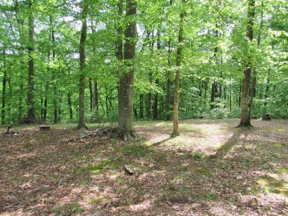 16-Lot The Woods At Wolf Creek, Jabez, KY 42544 Photo 3