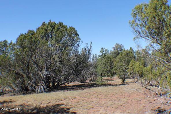 2 Acres Off Of Acr N. 3114, Vernon, AZ 85940 Photo 6