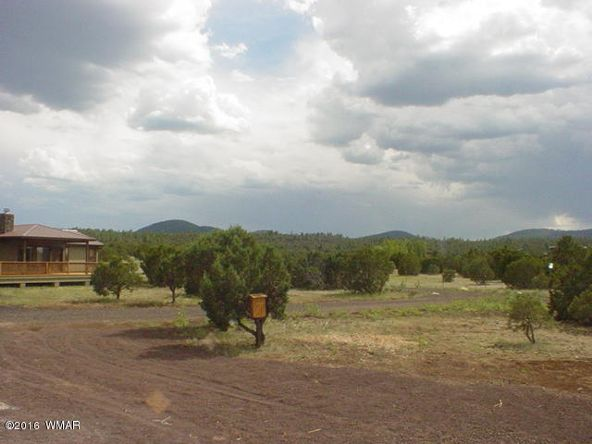 7 Apache County Rd. N3464, Vernon, AZ 85940 Photo 4