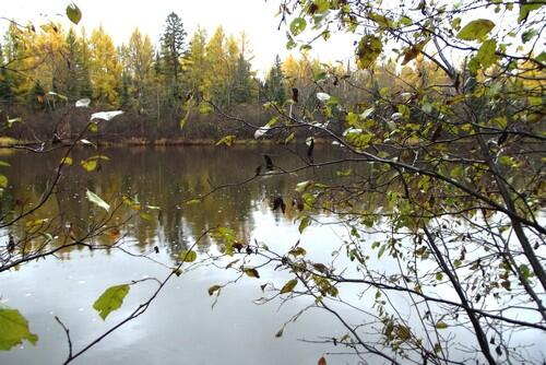 Lot 1 - 5813 Hwy. 70, Eagle River, WI 54521 Photo 7