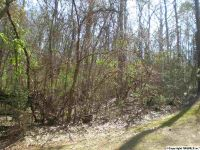 Home for sale: Lot 13 Lakeshore Dr., Langston, AL 35755