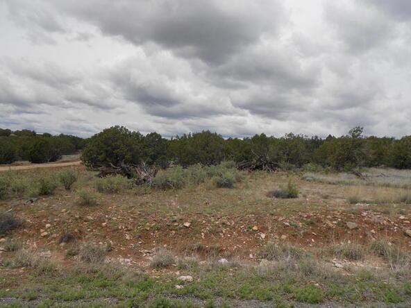 4650 W. Dillon Wash Rd., Prescott, AZ 86305 Photo 14
