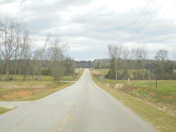 95 Acres Hwy. 84, Dothan, AL 36312 Photo 4