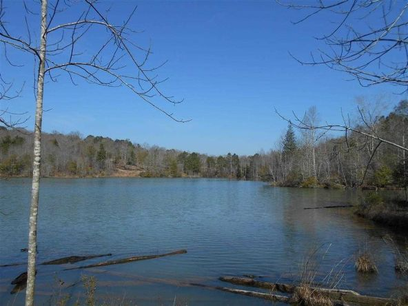 16.9 Acres Private Rd. 1363, Ariton, AL 36311 Photo 13