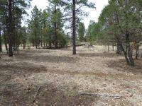Home for sale: 5093 Tamarron Pines Dr., Happy Jack, AZ 86024