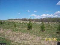 Home for sale: 00000 270th St., Long Prairie, MN 56347