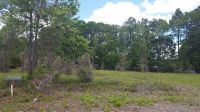 Home for sale: 16524 N.W. 174th Dr., Alachua, FL 32615