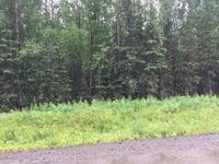 Home for sale: 4210 N. Lupine Dr., Kenai, AK 99611