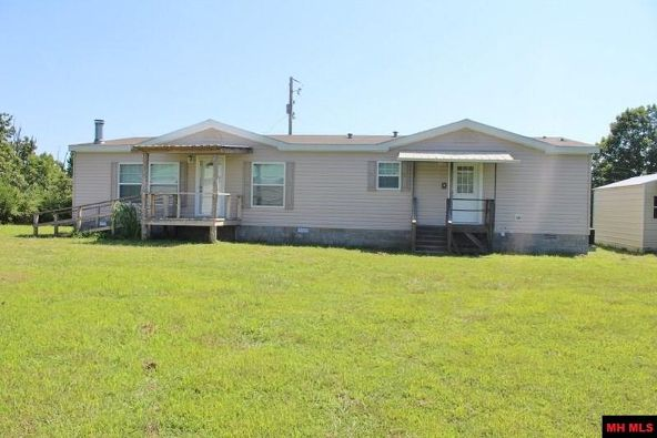 11 Mc 6043, Yellville, AR 72687 Photo 1
