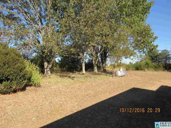 282 Co Rd. 363, Clanton, AL 35045 Photo 18