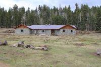 Home for sale: 26778 U.S. Hwy. 64, Taos, NM 87571