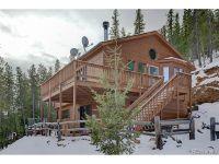 Home for sale: 1826 Clark Rd., Bailey, CO 80421