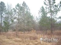 Home for sale: Lot 7,8,9 And 10 Cloverdale Rd., Hartsville, SC 29550