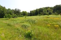 Home for sale: Lot 1 Lorwood Dr., Whitewater, WI 53190