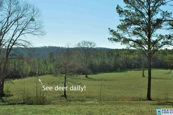 296 Deer Run Dr., Centreville, AL 35042 Photo 2