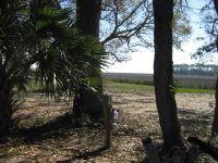 Home for sale: 7700 Eddingsville Beach Rd., Edisto Island, SC 29438