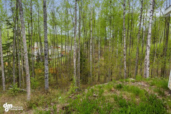 7020 W. Sandvik Dr., Wasilla, AK 99623 Photo 26