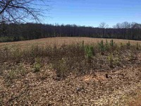 Home for sale: 10 Acres Lenox Dr., Starr, SC 29684
