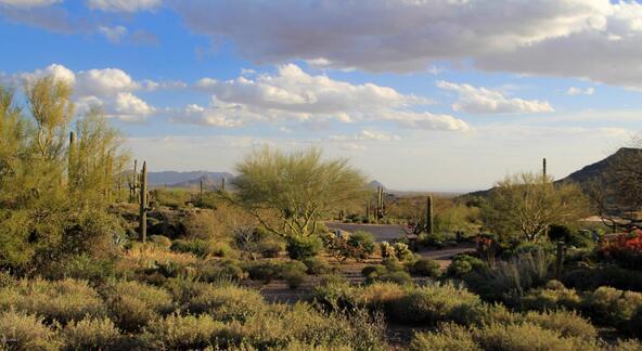 9840 E. Honey Mesquite Dr., Scottsdale, AZ 85262 Photo 73