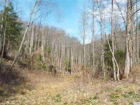 Home for sale: Parcel 079.03 Ground Hog Rd., Cosby, TN 37722