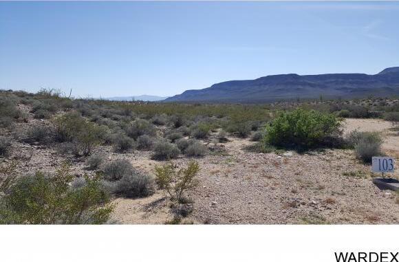 4332 W. Sunset Rd., Yucca, AZ 86438 Photo 41