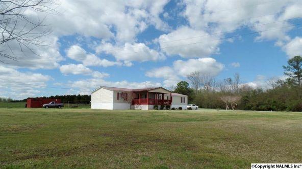 547 County Rd. 550, Grove Oak, AL 35975 Photo 22