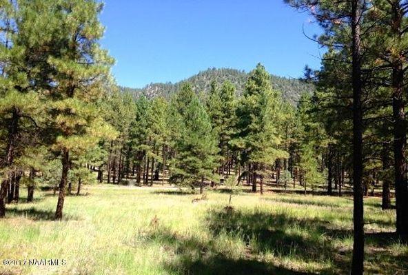 125 E. Mount Elden Lookout Rd., Flagstaff, AZ 86001 Photo 3