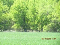 Home for sale: 18.5 Ac County Rd. W., Baraboo, WI 53913
