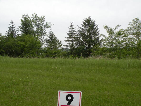 Lot 8 Combe St., Ripon, WI 54971 Photo 6