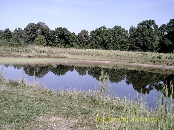 432 Cr 3355, Clarksville, AR 72830 Photo 20
