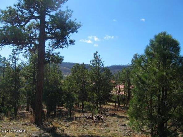 #65 County Rd. N1072, Greer, AZ 85927 Photo 8