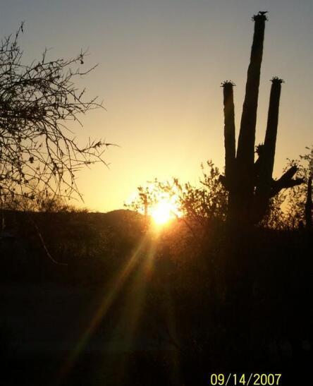 2159 W. Wahissa Trail, Queen Creek, AZ 85142 Photo 1