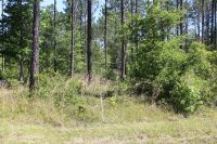 Home for sale: Lot 8 Rye Patch Rd., Ludowici, GA 31316