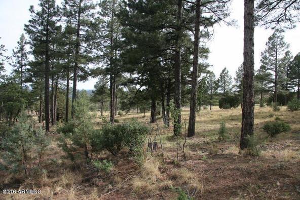 220 W. Zane Grey Cir., Christopher Creek, AZ 85541 Photo 8