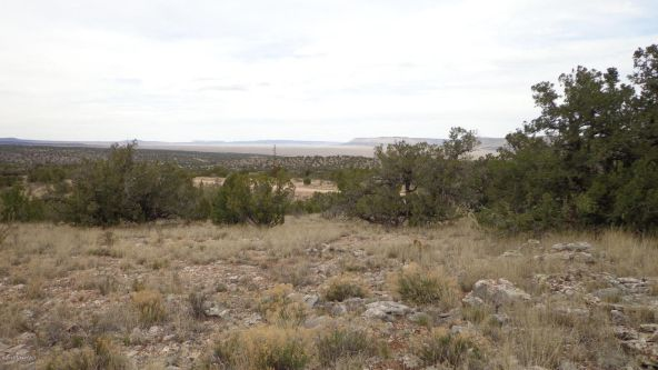 952 Bridge Canyon Unit 5 Lot 952, Seligman, AZ 86337 Photo 9