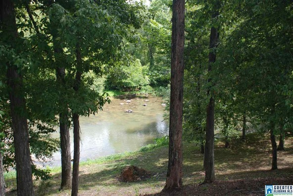 1291 Priebes Mill Rd., Oxford, AL 36203 Photo 93